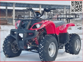 Bemi big hummer mega grizzly 200cvt full automatic r10 +carl