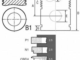 Piston si segmenti tractor Fiat 23/32-252