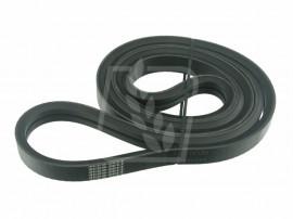 1603701M1 Curea Agro-Belt(S) combina Massey Ferguson