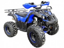 Atv Nitro Grizzly OffRoad Deluxe 125cmc
