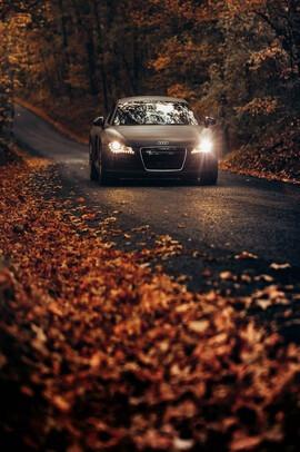 Mașini sport